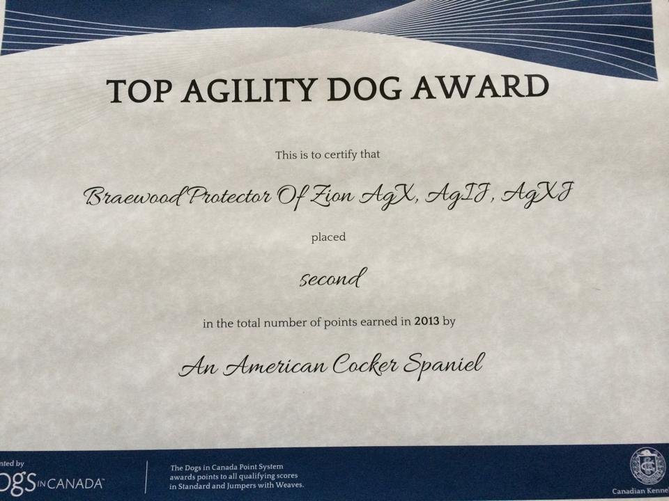 Agility Certificate